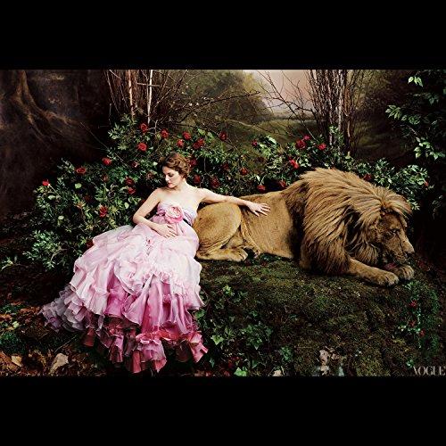 The Princess Dreams (Princess Dreams)