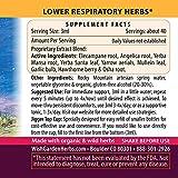 WishGarden Herbs Deep Lung - Organic Lung Support