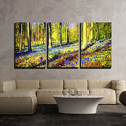 wall26 - 3 Piece Canvas Wall Art - Spring Forest Covered with Bluebells and Anemones Flowers - Modern Home Decor Stretched and Framed Ready to Hang - 16