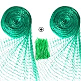 Senneny 2 Pack Bird Netting, 33Ft x 13Ft Anti-Bird Netting 100 Pcs Nylon Cable Ties, Green Garden Netting Protecting Plants Fruit Trees from Rodents Birds Deer (2 33Ft x 13Ft)