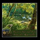 Daintree National Park - Tropischer Regenwald