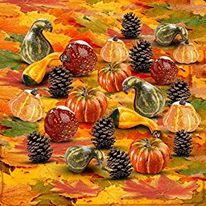 Thanksgiving Home Decoration Set of 250 Mini Maple Leaves + a Mix of 12 Artificial Mini Harvest Pumpkins and Gourds + 15 Pine Cones. Fall Autumn Wedding Décor & Parties 1