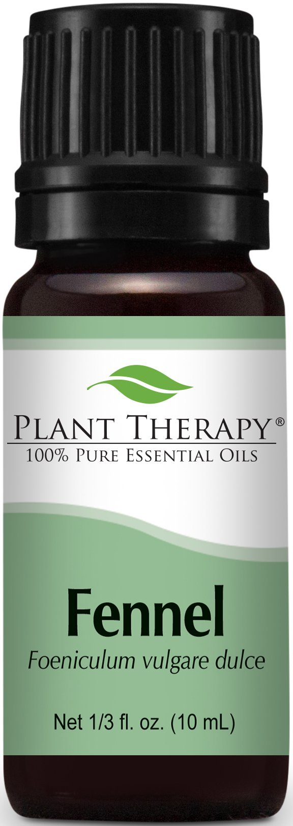 Plant Therapy Fennel (sweet) Essential Oil. 100% Pure, Undiluted, Therapeutic Grade. 10 ml (1/3 oz).