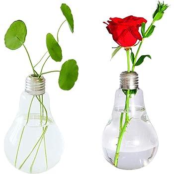 Amazon Lsarts Light Bulb Vase 65 Inch Home Kitchen