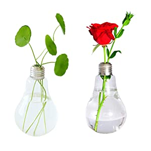 Ivolador 2PCS Lightbulb Glass Flower Planter Vase Terrarium Container Air Plant Pot Container Office Home Garden Restaurant Wedding Decor