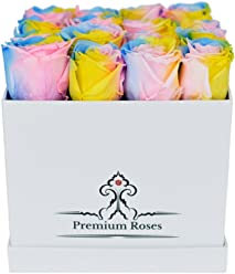 Valentine's Day Collections| Roses with Longevity (Medium, Rainbow)