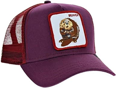 Gorra Goorin modelo Two Beavers 101-0244: Amazon.es: Ropa y accesorios