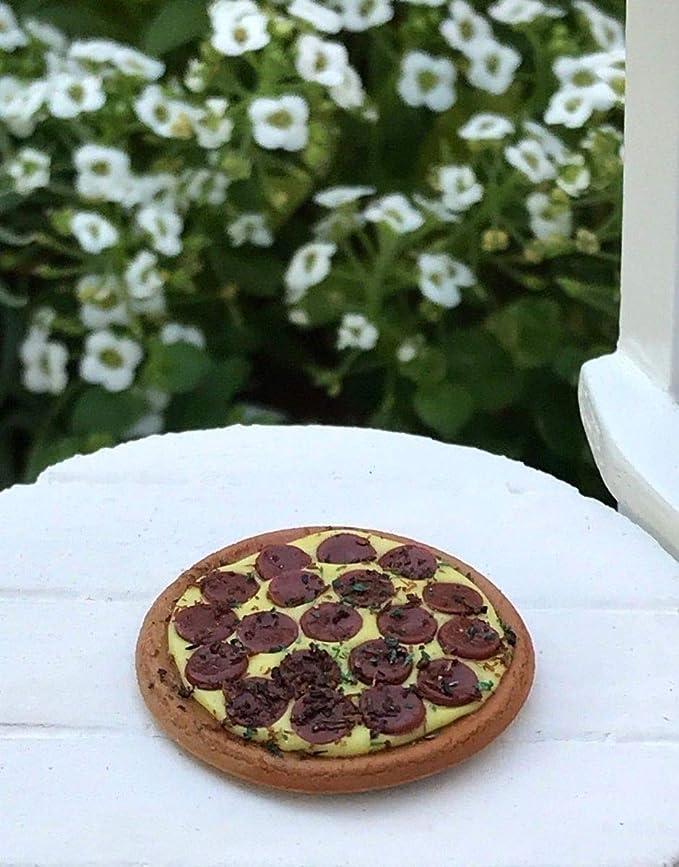 Miniature Dollhouse FAIRY GARDEN Accessories ~ Pepperoni Pizza with Slice /& Box