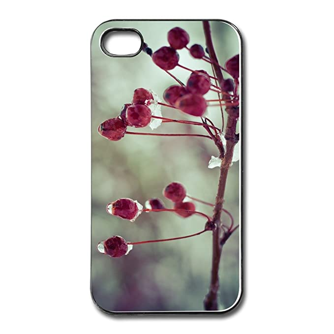 cover frozen iphone 4s