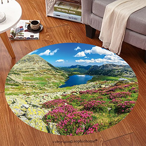Costume National Romania (Sophiehome Soft Carpet 261046202 Glacier lake,high mountains and stunning pink rhododendron flowers,Retezat National Park,Carpathians,Romania,Europe Anti-skid Carpet Round 47 inches)