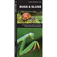 Bugs & Slugs: A Folding Pocket Guide to Familiar North American Invertebrates (Wildlife and Nature Identification)