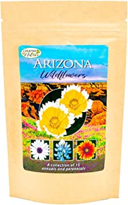 Arizona Wildflower Seed Mix - Over 40,000 Premium Seeds - by 'createdbynature' - Enjoy The Natural Beauty of Arizona Flowers in Your own Home Garden