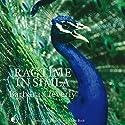 Ragtime in Simla Hörbuch von Barbara Cleverly Gesprochen von: Terry Wale