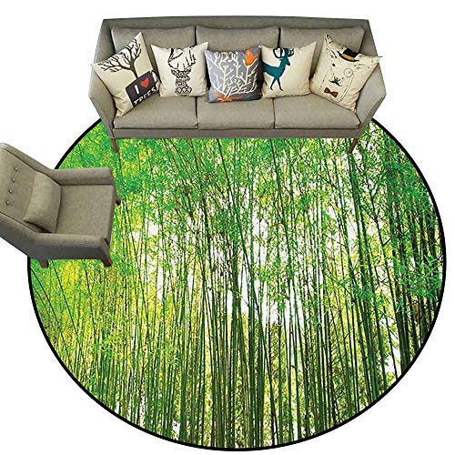 Round Area Rug CarpetBamboo Trees Decotaions Collection Natural Bamboo Forest Botanical Garden Photo Print Non Slip Rug D63 Green Yellow Olive Crimson Bamboo Shag Rug