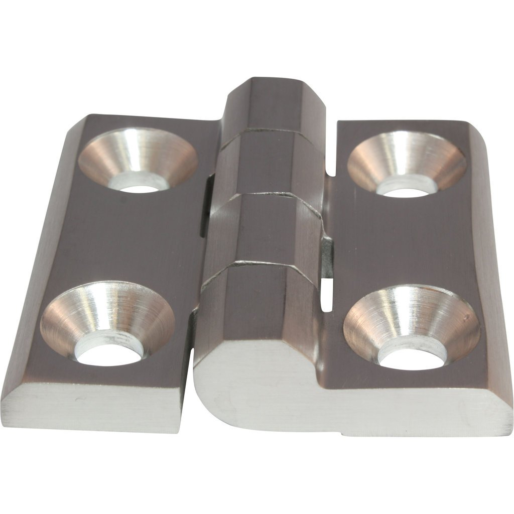 Bisagra de acero inoxidable de la bisagra Tornillo bisagra de acero inoxidable Inox 40 x 40 mm 270/° AISI 316