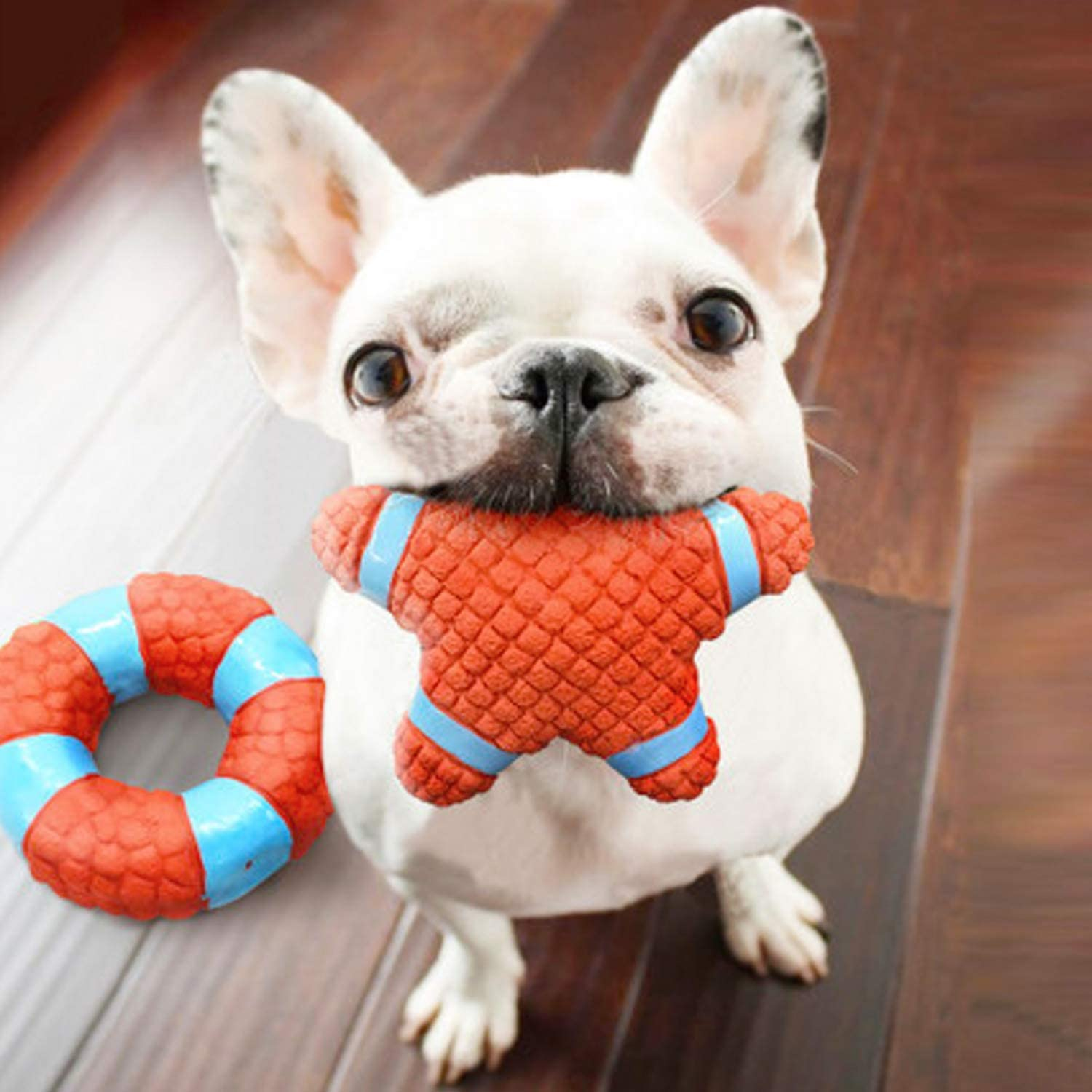 EETOYS Squeaky Toy Soft Latex Dog Toy Floating Ball for Interactive Fetch /& Play Tennisball Small