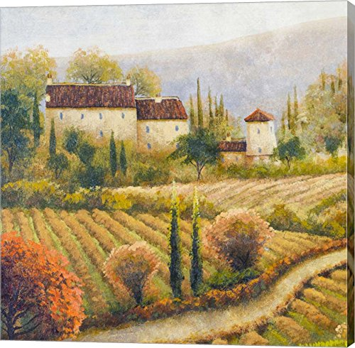 Tuscany Vineyard I by Michael Marcon Canvas Art Wall Picture, Gallery Wrap, 12 x 12 inches