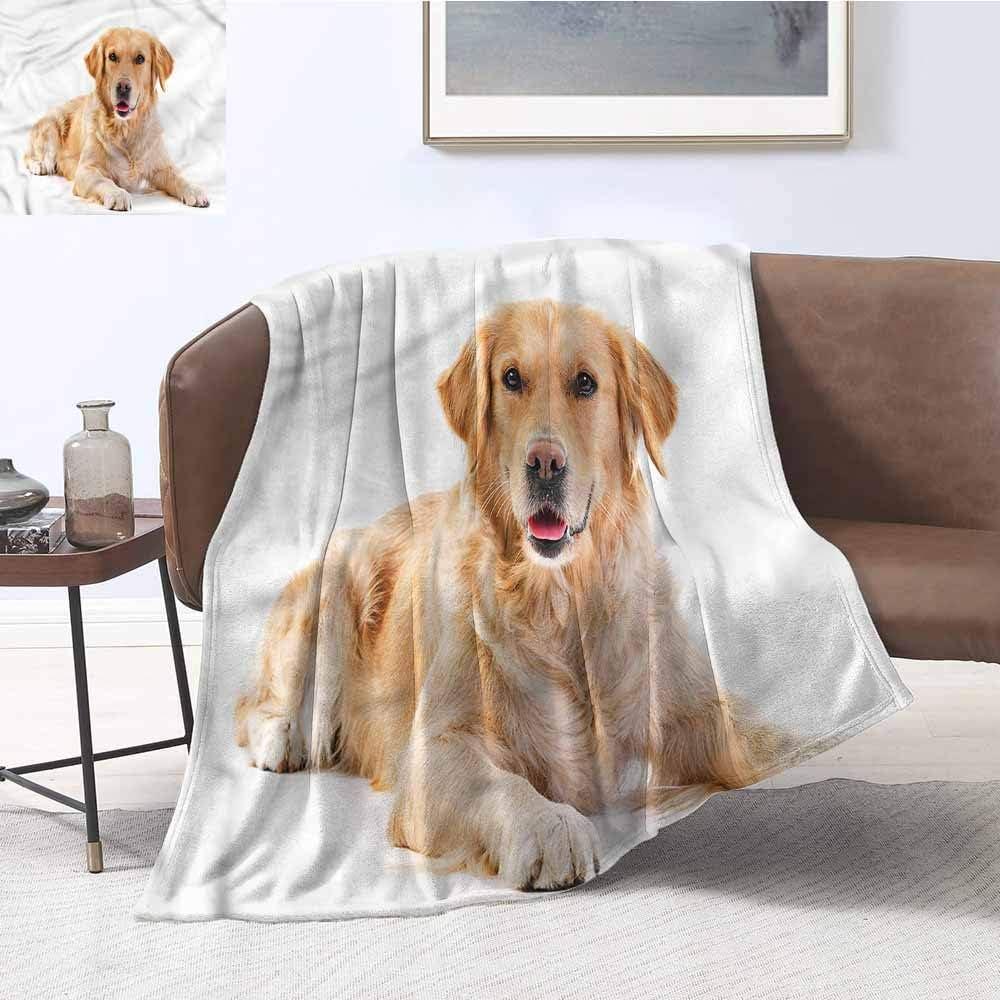 B07V3CVD74 DILITECK Microfiber All Season Blanket Golden Retriever Young Puppy Print Summer Quilt Comforter W60 xL80 Traveling,Hiking,Camping,Full Queen,TV,Cabin 618KX2ZVdbL