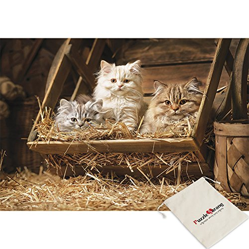 (Puzzle Korea,Portraits Fluffy Tabby Kittens Sleeping In An Old Barrel - 500 Piece Jigsaw Puzzle [Pouch Included])