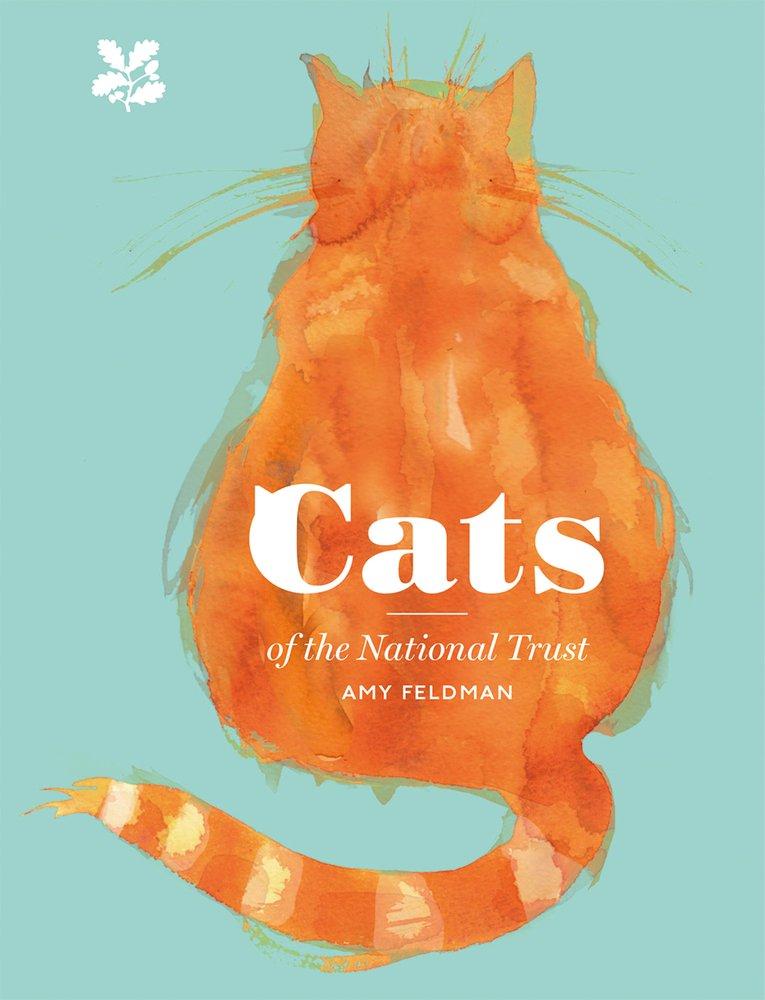 Cats d'Amy Feldman 618Kia%2BEs3L
