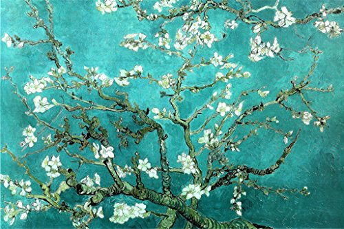 Almond Branches in Bloom, San Remy, c.1890 Poster by Vincent van Gogh 36 x 24in
