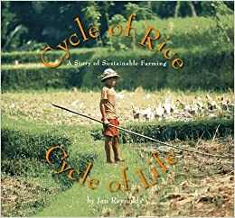 Book Cycle of Rice, Cycle of Life: A Story of Sustainable Farming by Jan Reynolds (2013-04-01)