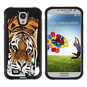 All-Round híbrido Heavy Duty de goma duro caso cubierta protectora Accesorio Generación-II BY RAYDREAMMM - Samsung Galaxy S4 I9500 - Sad Tiger Orange Stripes Fur Feline