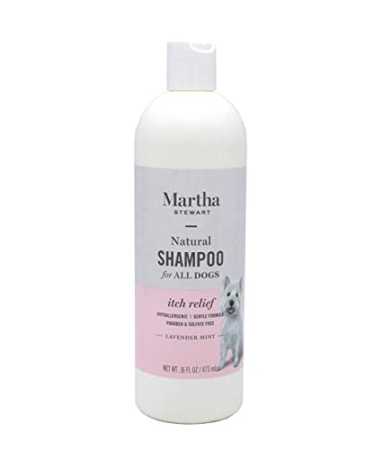 Martha Stewart Grooming Solutions For All Dogs and Puppies | Natural Dog  Shampoo, Conditioner, and Wipes For Pets