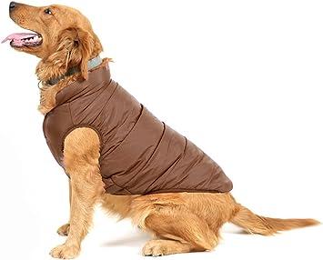 Oferta amazon: PENVO Ropa para Perros de Mascotas, Abrigos y Chaquetas Impermeables de Invierno para Perros pequeños y medianos Grandes Chaleco de Perro Cachorro Traje de suéter Talla M