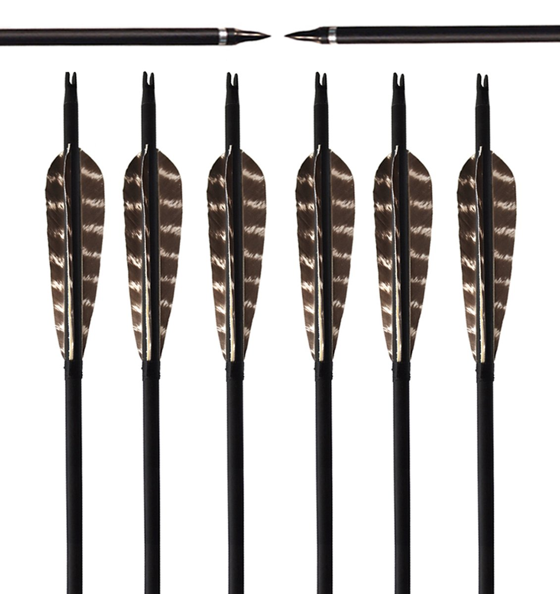 ARCHERY SHARLY [Pack of 6] 31Inch Carbon Targeting Practice Arrows Turkey Feather Fletching Arrows with Removanle Tips for Recurve Traditional Long Bow
