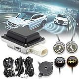 EWAY Universal Car Radar Blind Spot Detectors Sensor System Kit Auto Safety Monitoring Assistant, BSD, LCA, ODW, RCTA…