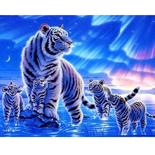 DIY Oil Painting Paint by Numbers Kit with Brushes Paint for Adults Kids Beginner Hand Paintwork Tiger and Crub Polar Aurora 16x20 inch(No ()