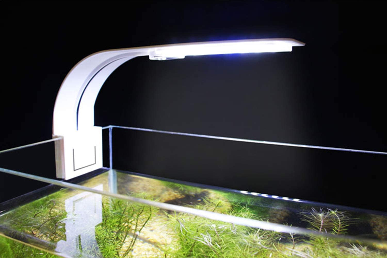 24 Leds L/ámparas para Acuario LED Acuario de Pinza con Luz Azul y Blanco NICREW Luz LED Acuario 30-40 cm 10W LED Acuario Delgada Blanco