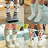 VWU 6 Pairs Baby Girls Boys Cartoon Knee High