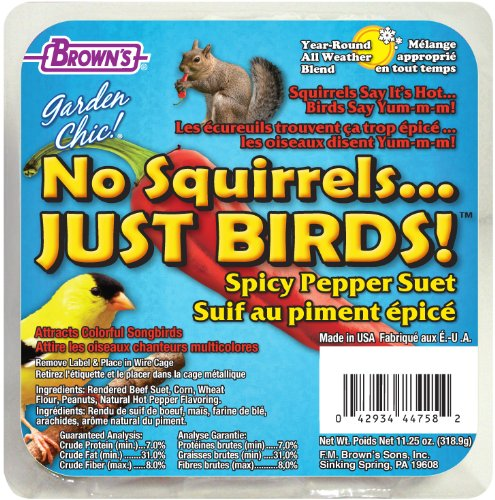 Garden Chic! No Squirrels... Just Birds, 11.25 oz (Bird Food Suet compare prices)
