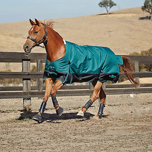 (Saxon 1200D Ripstop Standard Neck Heavy 2 Tone Turnout Blanket with Gussets, Hunter/Black, Size 75)