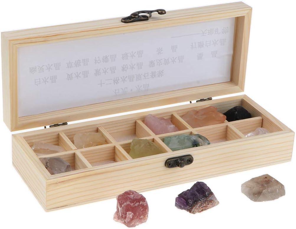 Sharplace Caja de 12 Muestra de Piedras Preciosas Cristales Minerales Cuarzo Amatista Coleccionable: Amazon.es: Juguetes y juegos