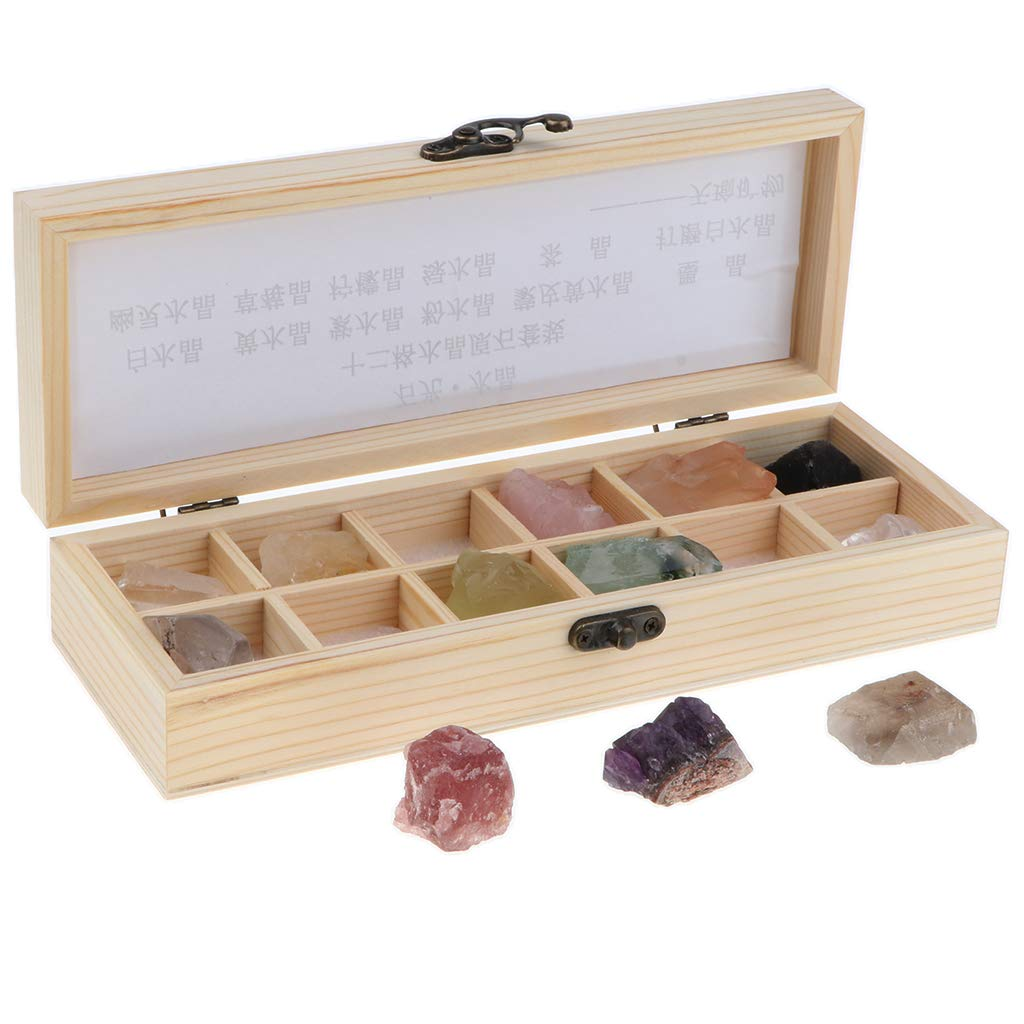 F Fityle 12pcs/Set Rocks and Minerals Collection Earth Science Toy Geology Schooll Teaching Aids Tool - Gem Stone Specimens