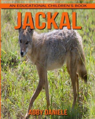 Jackal! An Educational Children's Book about Jackal with Fun Facts & Photos PDF ePub ebook
