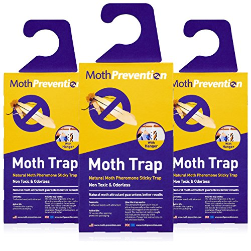 POWERFUL MOTH TRAPS FOR CLOTHES MOTHS | Odor-free & Natural | Best Catch-Rate for Clothes Moth and Carpet Moth Traps on the Market! | 3-Pack from MothPrevention - Results Guaranteed