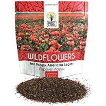 Red Corn Poppy Seeds - Large 1 Ounce Packet - Over 200,000 Flower Seeds