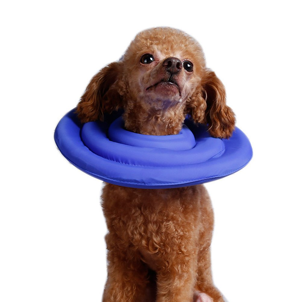 PET SHOW Recovery Pet Cone E-Collar for Cats Small Dogs Comfortabe Elizabethan Collar Color Blue Size S Pack of 1 by PET SHOW