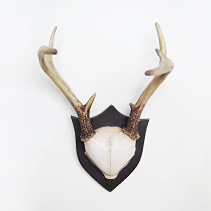 Amazon com: Contemporary Taxidermy Deer Antlers Wall Hanger Wall Art