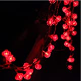 Amazon Price History for:13ft/4M 40 LED Red Lanterns String Lights Battery Operated Fairy String Lights For Wedding, Chinese New Year,Spring Festival,Party Decoration,Christmas.