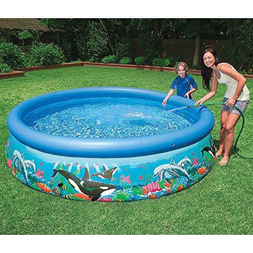 intex 10ft x 30in ocean reef easy set pool set with filter. Black Bedroom Furniture Sets. Home Design Ideas