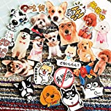 20 Piece Dog Puppy Animal Theme Acrylic Fridge Magnets Stickers Magnets Refrigerator Magnet Kitchen Magnets Cute Magnets Decorative Magnets