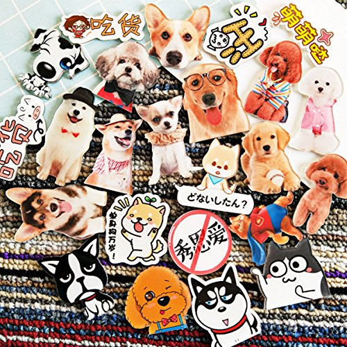 20 Piece Dog Puppy Animal Theme Acrylic Fridge Magnets Stickers Magnets Refrigerator Magnet Kitchen Magnets Cute Magnets Decorative Magnets by STEAM