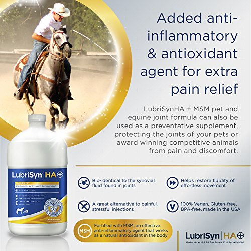 LubriSyn Hyaluronic Acid + MSM Joints Supplement, 128oz: Natural Pure HA Liquid Dog and Cat Joint & Cartilage Support, Relief, and Lubrication for Pets Including Dogs, Cats and Horses, Vegan Formula by Lubrisyn (Image #2)