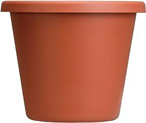 Akro Mils LIA12000E35 Classic Pot, Clay Color, 12-Inch
