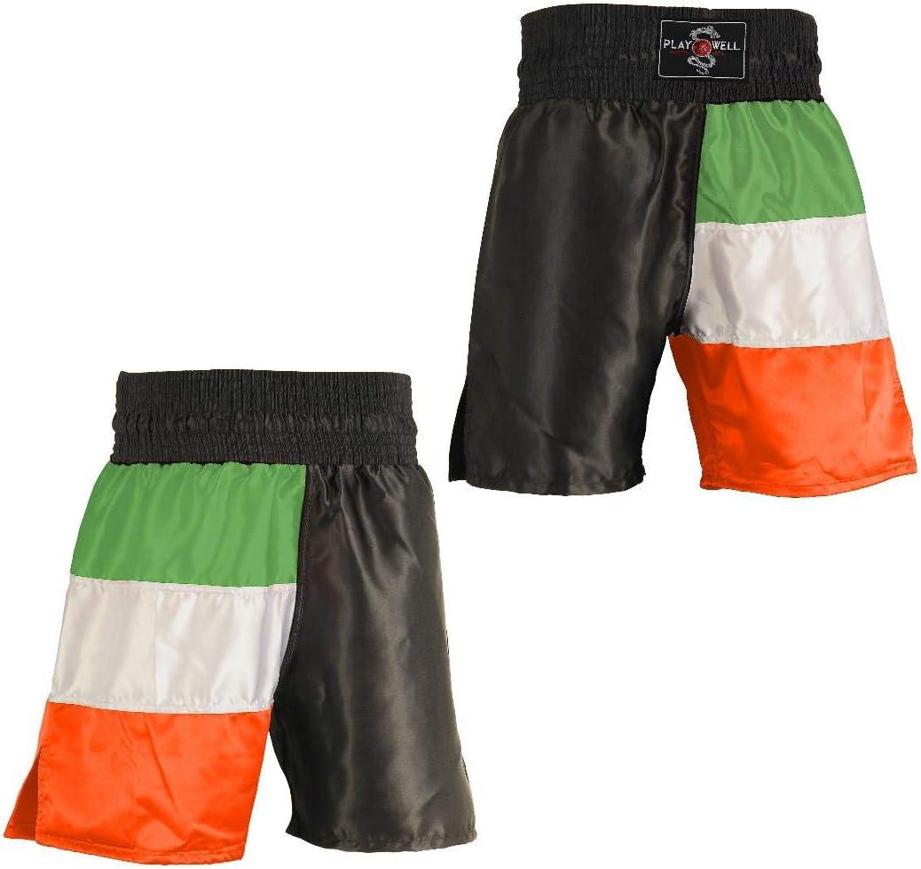 Boxing Competition 100/% Satin Training Shorts Ireland Flag Series